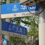 Huashan and Guangyuan Lu - May 2010 - 3.jpg