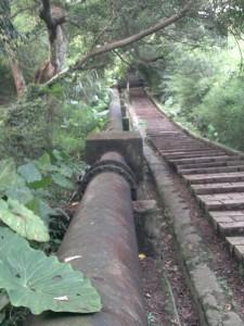 Yangmingshan pipe 1