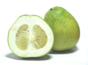1024px-Citrus_grandis_-_Honey_White